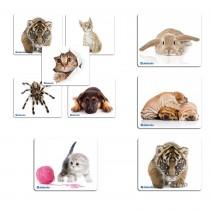 Коврик для мыши DEFENDER тканевый Silk+natural rubber, арт 010311